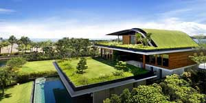 custom home with a green roof